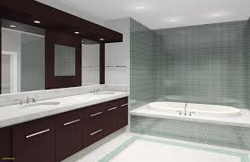bathroom ideas photo gallery indian luxury delighful bathroom design ideas without bathtub with full