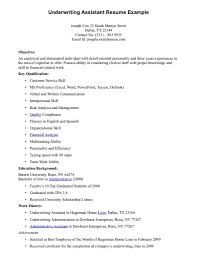 Life Insurance Underwriter Resume Sample Job And Resume Template