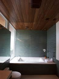 ceiling view in gallery modern bathroom