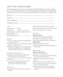 Birth Plan Check List Sample Birth Plan Template