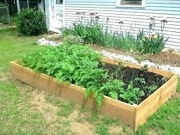 best wood for raised garden bed best wood to make ed garden beds attractive bed materials