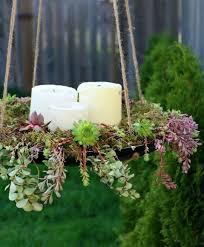 Succulent Garden Designs Beauteous 48 Succulent Planting Ideas With Tutorials Succulent Garden Ideas