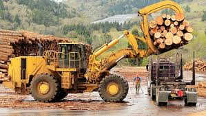 Oilfield Logging And Hauling Services Business In Focus