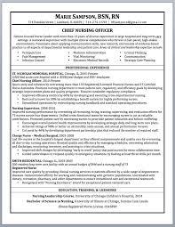 Nurse Hospice Nurse Resume