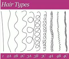 Andre Walker Hair Chart The Best Methods To Determine Your Hair Type Texture