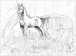 Majestic Horse Horses Adult Coloring Pages For Adultsable Real Kids