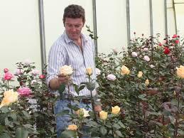 Uhuru Farm - Parfum Flower Company