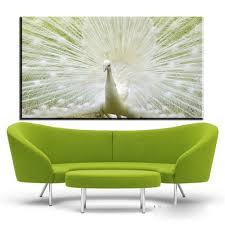Xdr751 Schöne Vogel Weiß Pfau Tapete Hd Wandmalerei Poster Leinwand