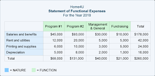 Non Profit Comparison Chart Statement Of Functional Expenses Accountingcoach