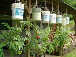 garden bucket. DIY Hanging Bucket Garden 1