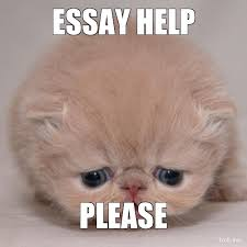 help me essays best college essay writers service for college  help me essays