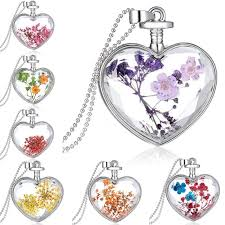 details about charm silver natural real dried flower heart glass pendant necklace jewelry new