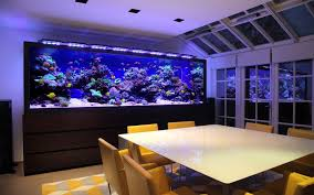 aquarium for office. Fish Tank Office Phenomenal Image Inspirations Aquarium Architecture Custom For