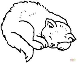 Disegno Di Gatto Che Dorme Da Colorare Disegni Da Colorare E Con