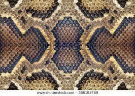 Python Pattern Cool Pattern Python Skin Stock Photo Edit Now 48 Shutterstock