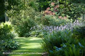 Small Picture Oxford College of Garden Design Lisa Cox Garden Designs Blog