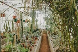 moorten botanical garden palm springs this rad love
