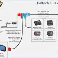 haltech e8 wiring diagram wiring diagram and schematics MSD Wiring Diagram at Haltech E8 Wiring Diagram