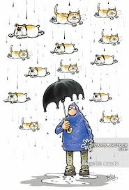 animated raining cats and dogs. Simple Dogs Raining Cats And Dogs Cartoon 1 Of 21 Animated O