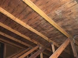 attic mold. before picture of attic mold