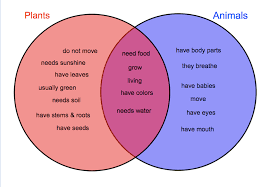 Venn Diagram Plants Plant And Animal Cell Venn Diagram Free Image