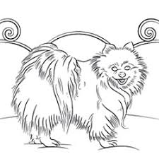 Small Picture Online Coloring Pages of Your Favorite Dog Breed