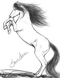 rearing horse drawing step by step.  Drawing Rearing Horse Drawing Picture In Step By I