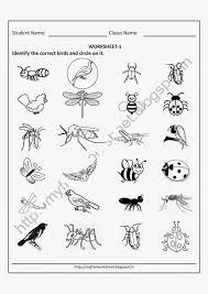 Kindergarten Free Printable Science Worksheets For Kindergarten ...
