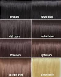 Hair Color Chart For Black Hair New Black Hair Color Chart Collection Of Hair Color Ideas