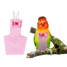 Cockatiel Chart Fladorepet Cockatiel Parrot Bird Diaper Nappy Flight Suit With Waterproof Liner Pet Bird Macaw Clothes