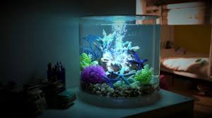 15 Aquarium Light Biorb Tube 15 Litre With Mcr Light