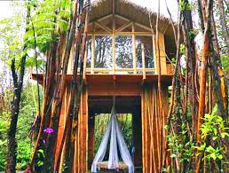 Small Picture This tiny off grid Hawaiian home cost just 11000 to build Eco