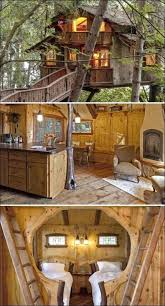 treehouse furniture ideas. Treehouse Furniture Ideas Bedroom Best Tree House Interior On Bedrooms Homes And Stores .