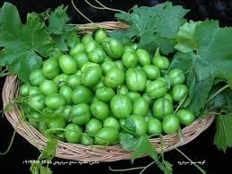 40 Best Persian Street Foods U0026 Entertainments  Images On Iranian Fruit Trees