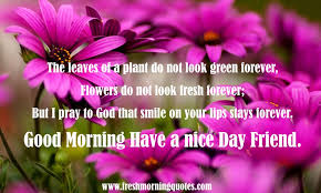Good Morning Good Day Quotes Best of 24 Good Morning Friend Have A Nice Day Images Freshmorningquotes