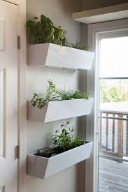 Garden To Kitchen 17 Best Images About Herb Garden On Pinterest Gardens Kitchen
