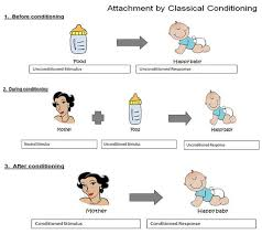 Example Of Classical Conditioning Classical Conditioning In Humans Harry Harlow Did A Number Of