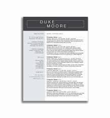Best Resume Tips Lovely 53 Lovely Sample Professional Resume Resume