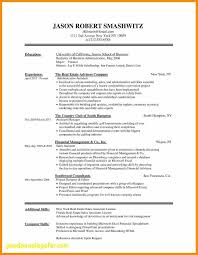 Combination Resume Template Word Awesome Bination Resume Formats ...