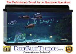 Aquarium Backgrounds Aquarium Backgrounds For Any Size Tank