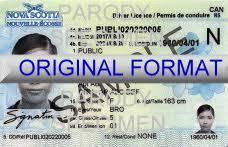 Download License Dagorcomputing - Template Driver Canada