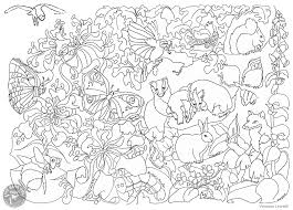 Small Picture British wildlife colouring page The Barn Owl Trust