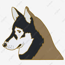 Cute Dog Husky Hand Drawn Illustration ...
