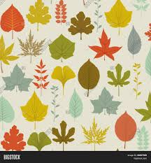 Fall Leaf Pattern Magnificent Autumn Leaves Pattern Vector Photo Free Trial Bigstock