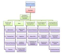 Theatre Organization Chart What Is An Organogram Definition Structure Example