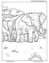 Olifanten Kleurplaat Mooi 548 Beste Afbeeldingen Van Elmer Olifanten