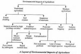 essay on how to reduce environmental problems  essay on how to reduce environmental problems