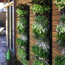 best vertical garden wall ideas on kits uk