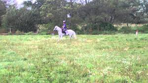 Isabella Graney & Dancing Diva - Intro A Dressage Test - YouTube