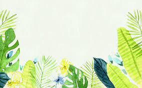 Tropical Aesthetic Wallpapers ...